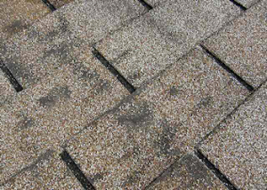 Dark, dirty-looking areas on your roof